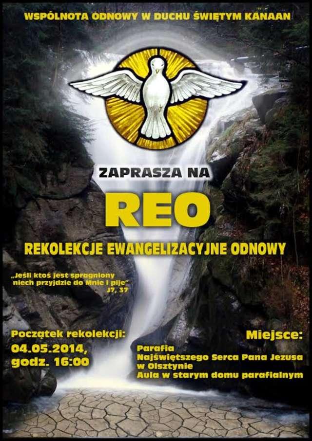 REO Serce 2014