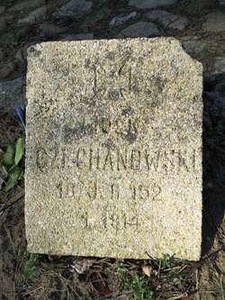 Jeden z ocalałych płyt na cmentarzu w Szkotowie: Czechanowski