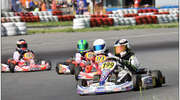 Kartingowe Mistrzostwa Polski. Rotax Max Challenge Polska
