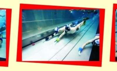 Hokej podwodny - Rozgwiazdy kontra Foki