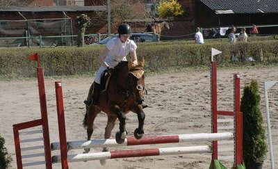 Regionalne Zawody Jeździeckie