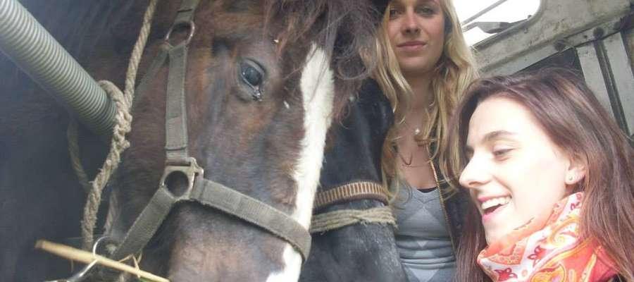 Patrol tym razem uratował dwa konie