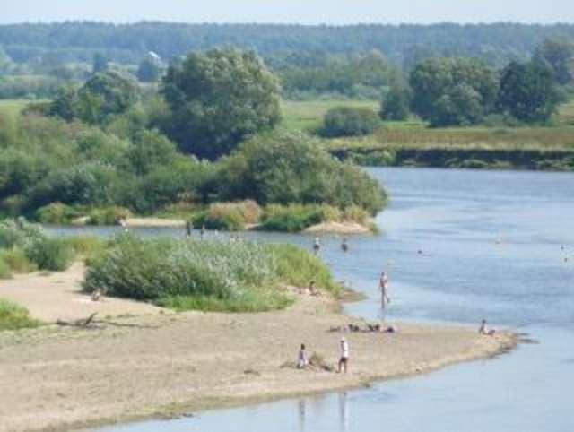 W rzece Bug w Broku można się kąpać - full image