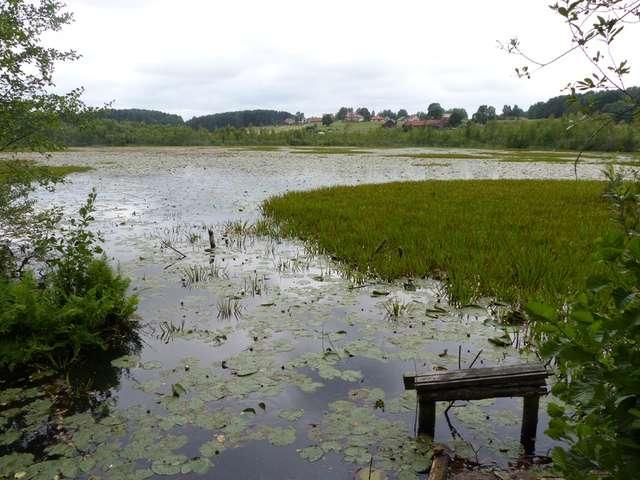 Widok na jezioro Zgniłek z prowizorycznego pomostu przy zrujnowanym domu na wschodnim brzegu - full image