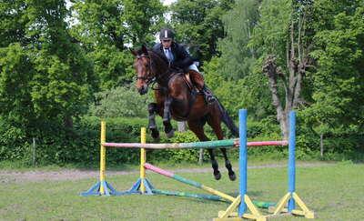 Regionalne Zawody Jeździeckie w Żegotach