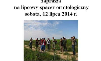 Lipcowy spacer ornitologiczny
