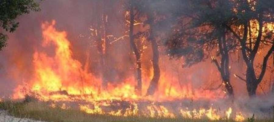 W okolicy leśnictwa Rząśniki (Nadleśnictwo Giżycko) w gminie Orzysz płonie las