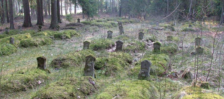 Cmentarz wojenny w Domajewie przed remontem (2006 r.)