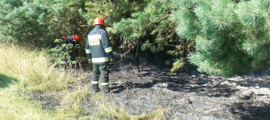 W Harszu spaliło się około 10 arów ściółki leśnej lasu prywatnego
