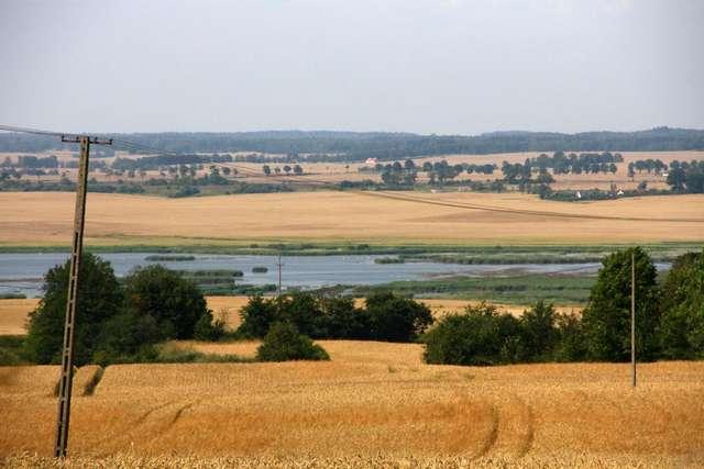 Rezerwat Przyrody - Polder Sątopy-Samulewo - full image