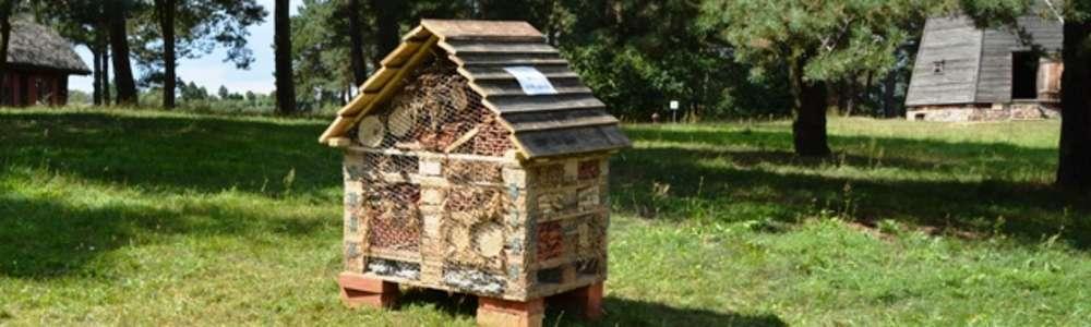 Pożyteczne owady znalazły dom w skansenie w Olsztynku