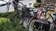 Złodzieje polubili rowery. Zastawiają je w lombardach
