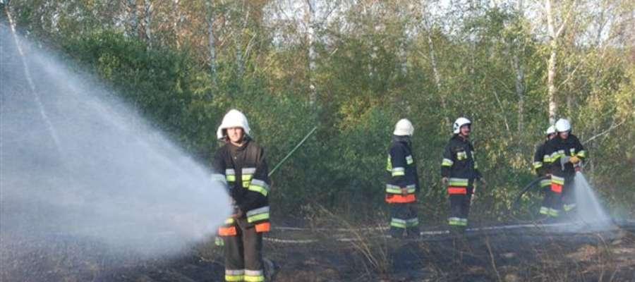 Akcja strażacka w Trzcinie