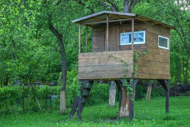 Mały domek na drzewie - full image