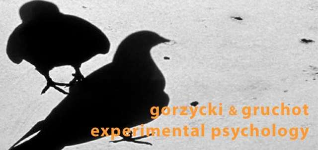 Gorzycki/Gruchot - Experimental Psychology - full image