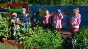 Ogródek przy Przedszkolu Gminnym nr 1 w Bartoszycach