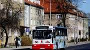 Autobusy na Poznańskiej to konieczność, nie fanaberia