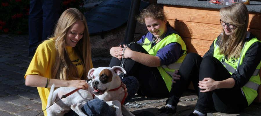 Happening miłośników zwierząt odbył się przed Bramą Targową