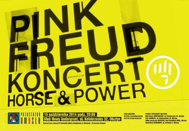 Pink Freud, rock'n'rollowy zespół jazzowy zagra AnderGrancie! - full image