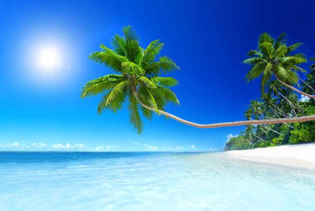 Egzotyka - czyli gorących wakacji ciąg dalszy! - full image