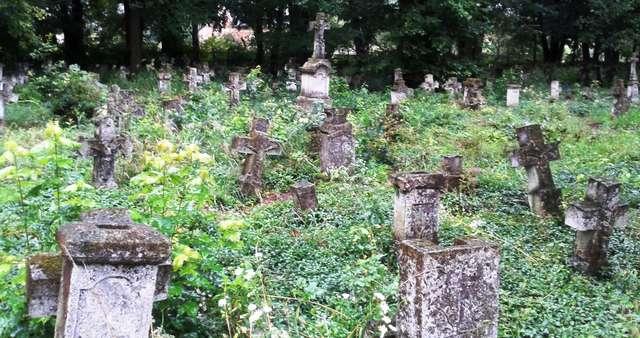 Cmentarz w Lublińcu Nowym, jesień 2014 - full image