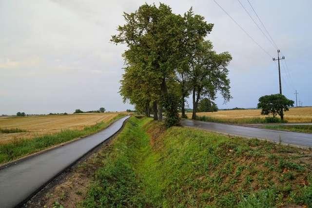 Fragment trasy w powiecie węgorzewskim - full image