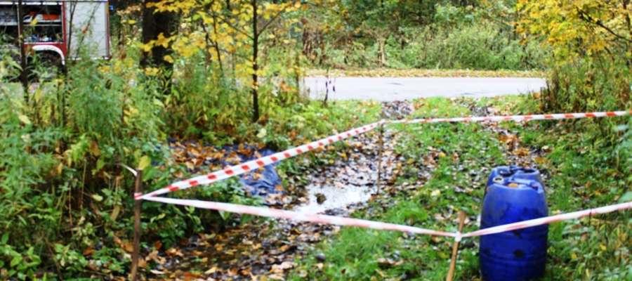 W środę (15 października) braniewscy strażacy otrzymali informacje o pozostawionych na poboczu drogi powiatowej w pobliżu Wyszkowa