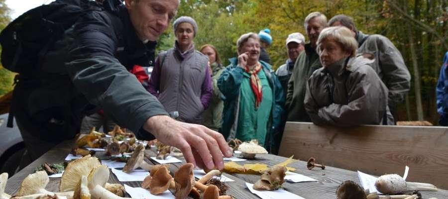 Łącznie zebrano pięć i pół kilograma grzybów