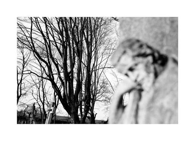 Kocham Zatorze jak człowieka — fotograficzna podróż - full image