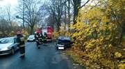 Opel uderzył w drzewo. Trzy osoby w szpitalu