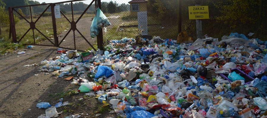 Tak wyglądało zamknięte wysypisko śmieci koło Góry pod koniec tegorocznych wakacji