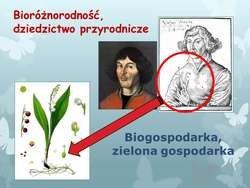 Tak mi się ten Kopernik skojarzył...
