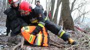 Strażacy walczyli o życie saren. Nie udało się