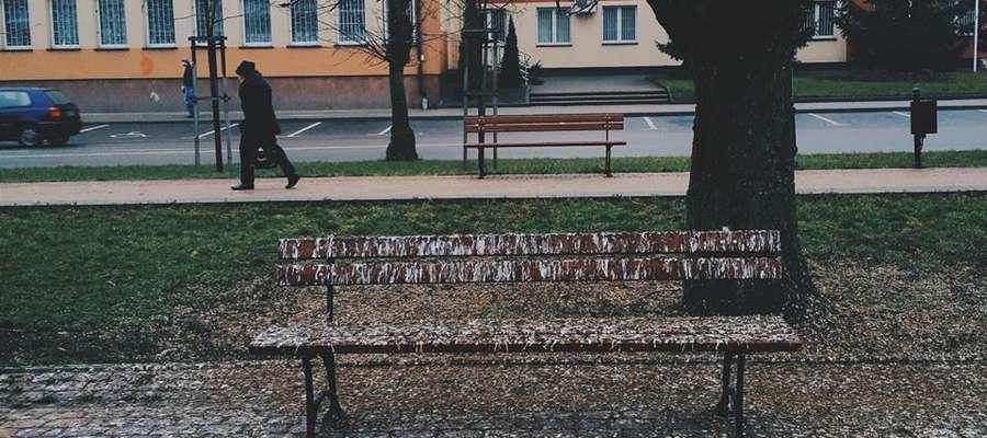 Ławka upstrzona ptasimi odchodami