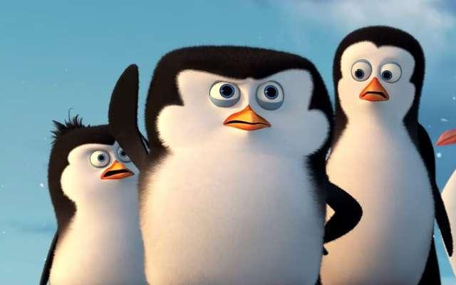 Kowalski... opcje! - Pingwiny z Madagaskaru w kinach od 30 stycznia - full image
