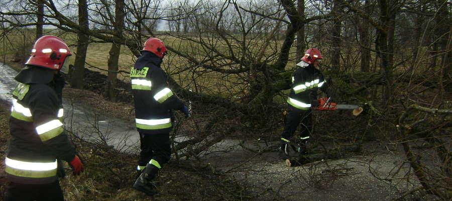 Silny wiatr przysporzył wiele pracy służbom komunalnym i strażakom.