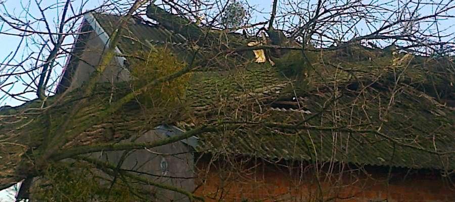 Wiatr przewrócił drzewo na sklep w Petrykozach