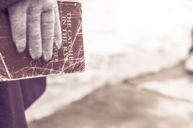 Książka na przystanku, czyli bookcrossing w Olsztynie - full image