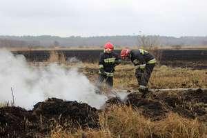 Pożar torfowisk już pod kontrolą