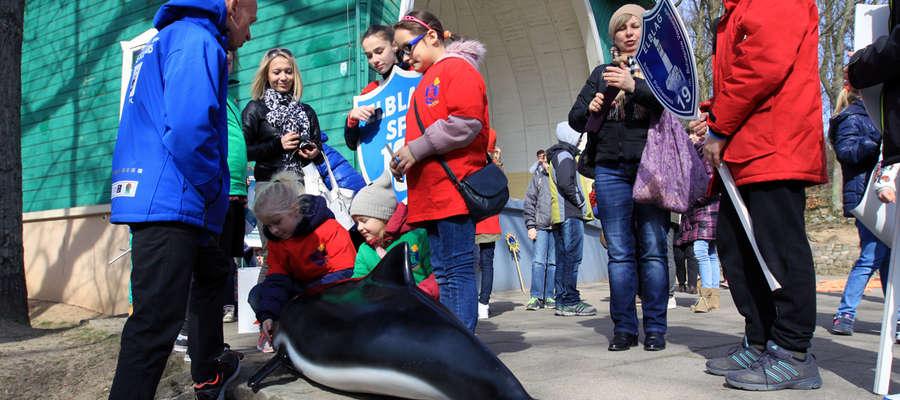 Morświn zawitał także do Bażantarni