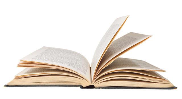 Światowy Dzień Książki  - full image