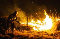 Akcja strażaków w Krzewsku trwała pięć godzin / Zdjęcie jest tylko ilustracją do tesktu