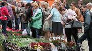 VII Wiosenne Targi Ogrodnicze za nami. Zobacz zdjęcia!