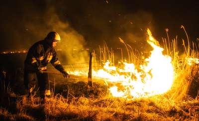 Wyjeżdżali do ognia i wody