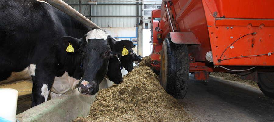 Kluczową sprawą w bilansowaniu dawki pokarmowej dla bydła mlecznego jest interpretacja wyników wyrażonych w suchej masie i dobór mieszanki uzupełniającej