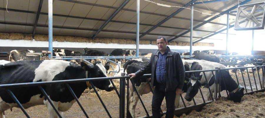 — Przy spadających cenach mleka trzeba go więcej sprzedawać, aby uzyskać odpowiednie dochody. Nadrobić to można poprzez zmniejszenie kosztów robocizny. Należy tak rozbudować i udoskonalić oborę, aby praca przy 120 krowach trwała tyle co przy 60 — mówi Jan