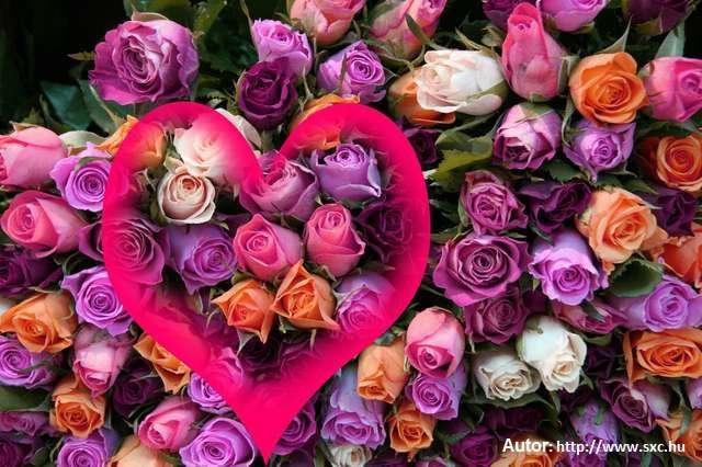 Śpiewam dla Ciebie, kochana Mamo - full image