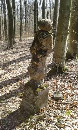 Pomnik wykuty jest w kamieniu i ma około 160 cm wysokości