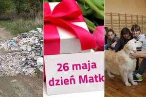Oczami Olsztyńskiej 24: Zobacz co działo się w maju