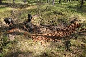 Niebezpieczne znalezisko w lesie. Policjanci zabezpieczają kilkaset niewybuchów